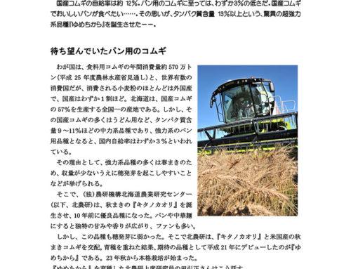 国産小麦の未来を背負う『ゆめちから』(本別町ほか)『家の光』北海道版13年11月号